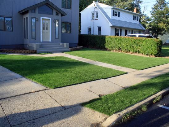 Artificial Grass Photos: Synthetic Turf Glenarden Maryland  Landscape