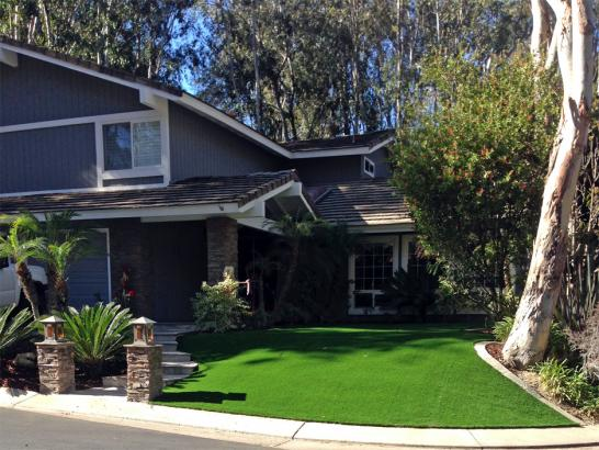 Artificial Grass Photos: Synthetic Turf Kingstown Maryland  Landscape  Back Yard