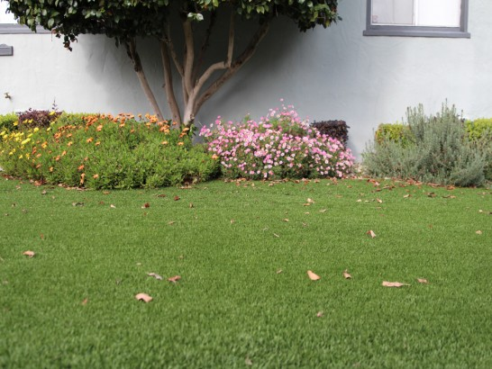 Artificial Grass Photos: Synthetic Turf North Bethesda Maryland  Landscape
