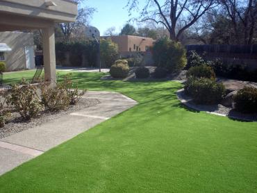 Artificial Grass Photos: Synthetic Turf Overlea Maryland Lawn  Front Yard
