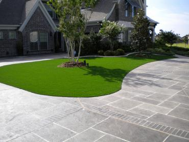 Synthetic Turf Rock Hall Maryland  Landscape  Back Yard artificial grass