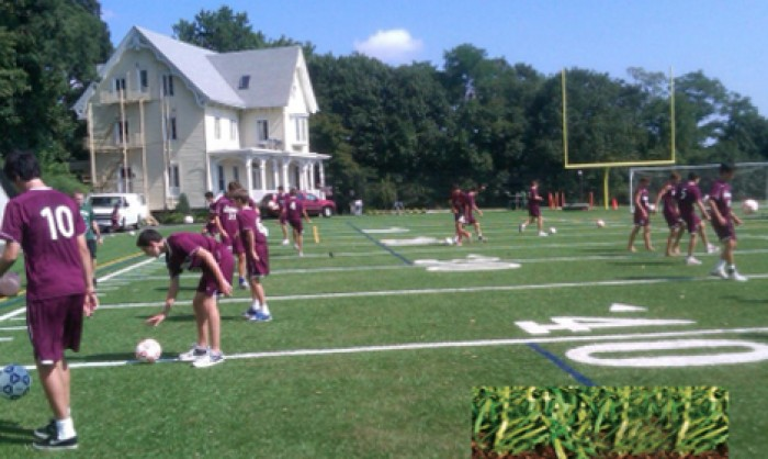 Sports Fields Synthetic Grass in Baltimore and Baltimore area